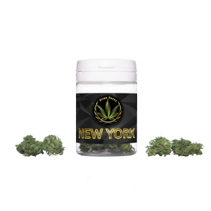 Susz konopny CBD NEW YORK 1g+0,5g GRATIS